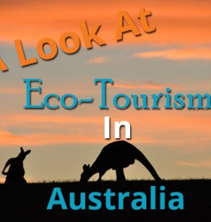 A Look At Eco-Tourism In Australia